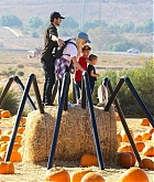 At_the_Pumpkin_Patch_with_Family_on_October_28-07.jpg